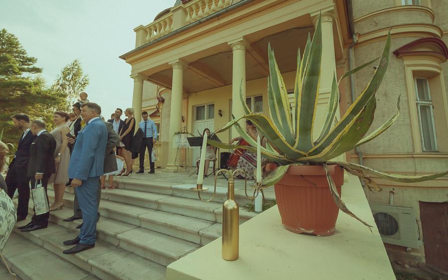 fotograf dzierżoniów 5 Wesele w Pałacu | Makowice