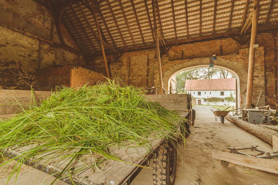 fotograf wroclaw 27 Sesja wizerunkowa | Dobro Krasków